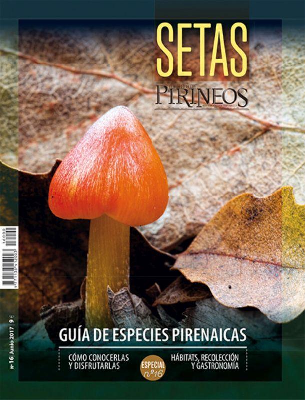 ESPECIAL PIRINEOS 16 - GUIA DE SETAS DEL PIRINEO