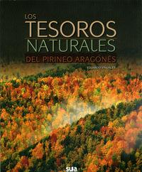 TESOROS DEL PIRINEO ARAGONES, LOS